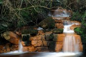 Water Feature after Hardscaping Services, Ashland, VA